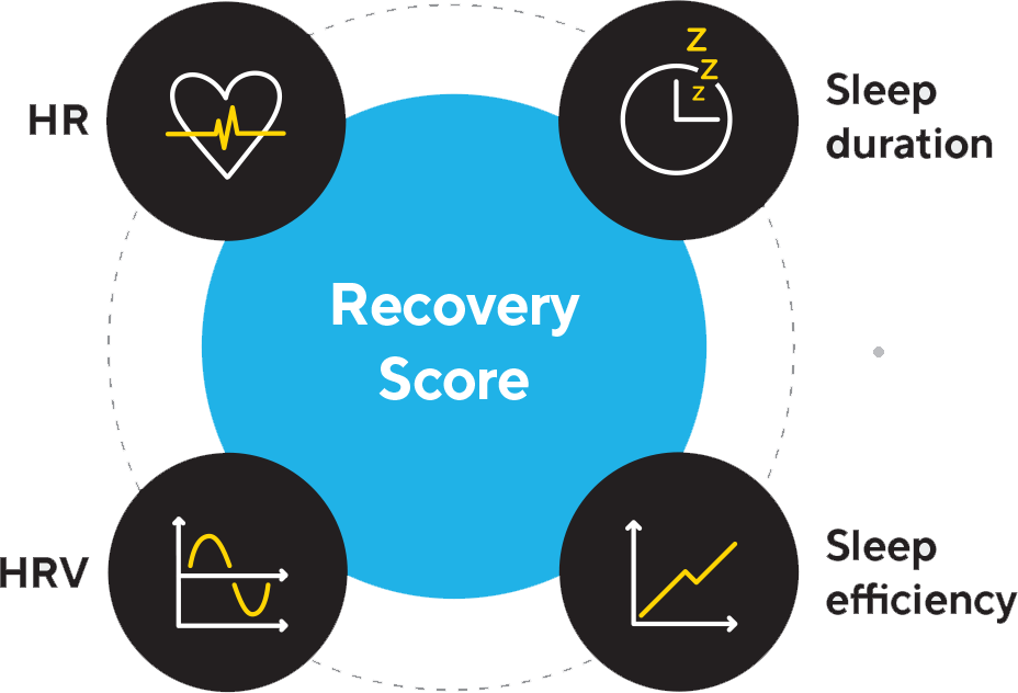 Recovery Results